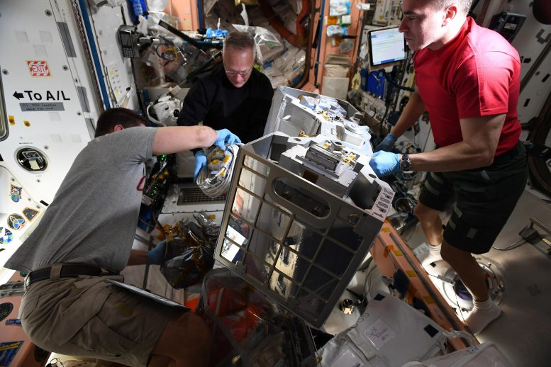 Astronauts RiTS Installation