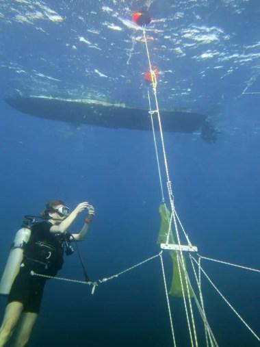 Brabel Honisk Offshore Sampling