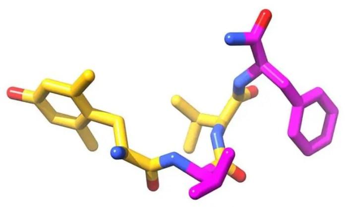 Bilorphin Structure