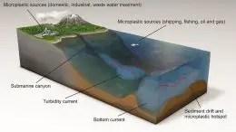 Deep Ocean Microplastic Hotspots