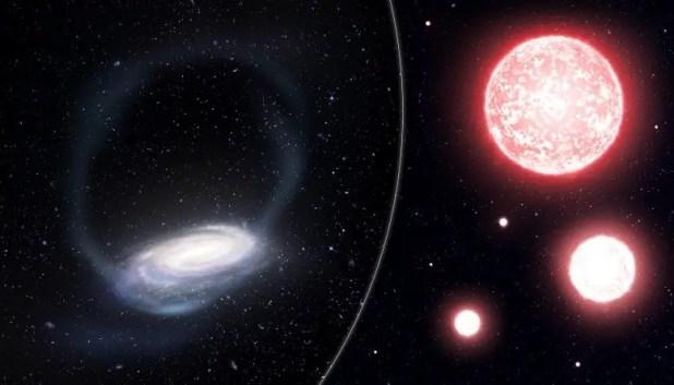 Phoenix Stream and Red Giant Stars