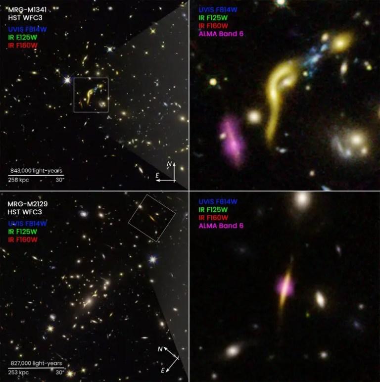 REQUIEM Galaxies Compass Image