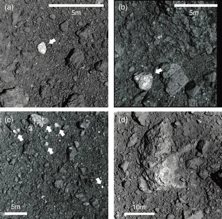 Rocas de superficie Ryugu