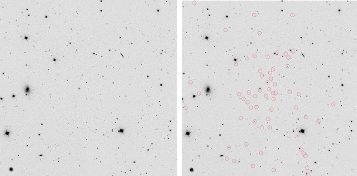 Chemical Analysis Reveals that Nearby Galaxy Segue 1 is a
