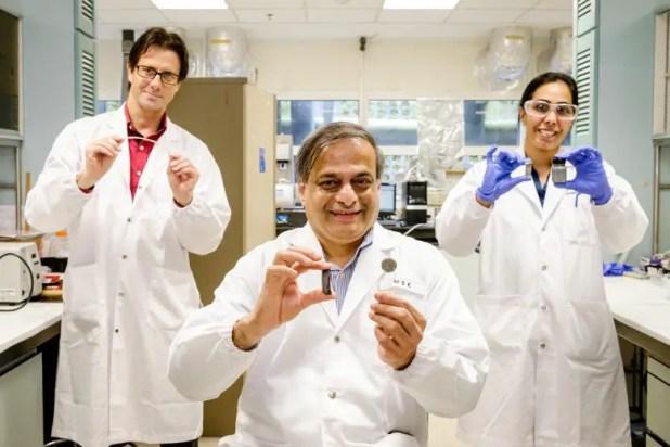 NTU Assoc Pro Terry Steele, Pro Raju V.  Ramanujan and Drs.  Richa Chaudhary