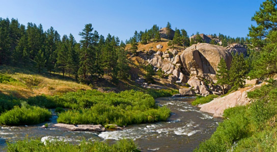 colorado-south-platte-antibiotic