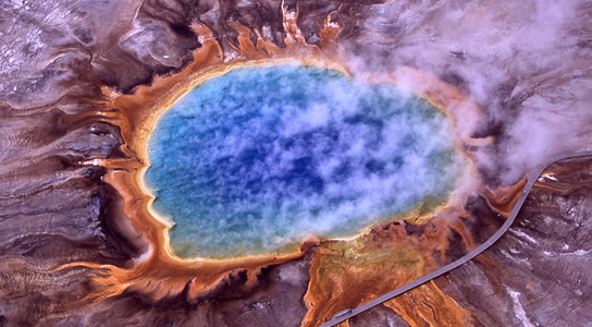 grand-prismatic-thermophile