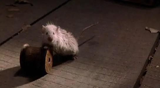 mouse-pushing-wheel