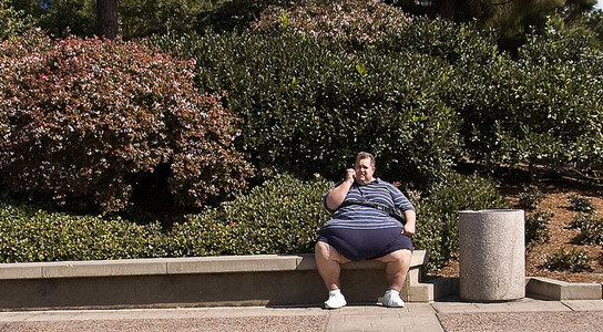 overweight-person-bench
