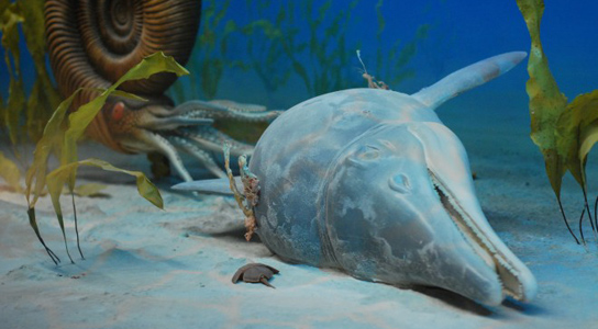 utah-museum-ichthyosaur