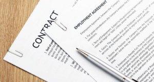 employment-contract-crop