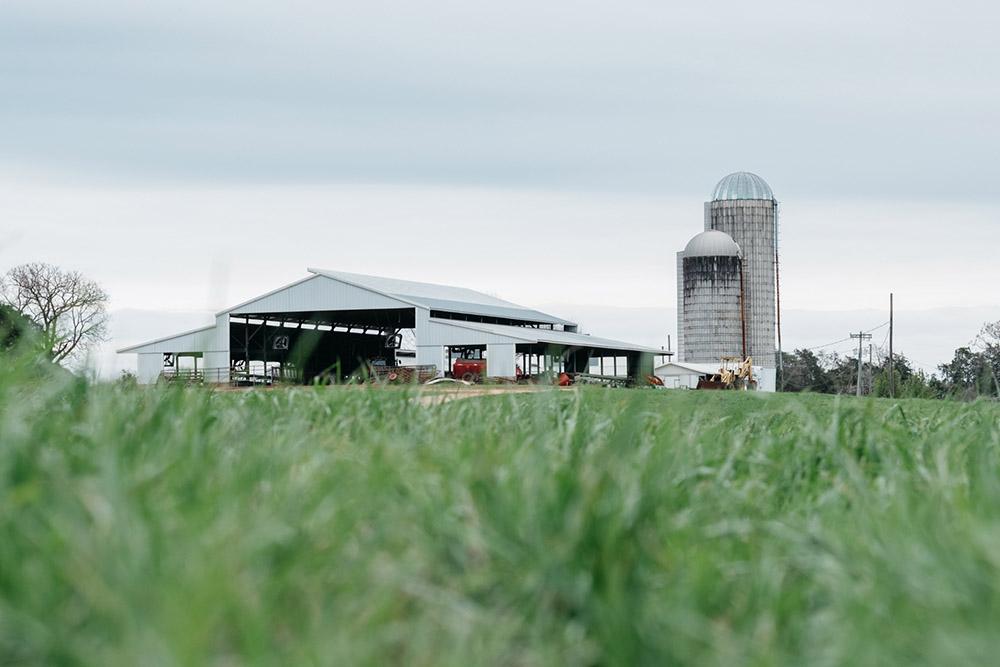 milky way farms barn