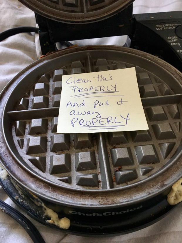 Cheetah Boy left this waffle iron in the cupboard, uncleaned and with the cord hanging down. He didn't see any problem with this. But his mother, the Frumpy Middle-age Mom Marla Jo Fisher, disagreed.
