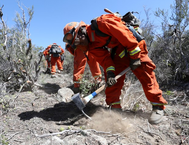 Cal Fire inmate hand crews train for the upcoming fire season by cutting fire breaks using hand tools in Hemet Thursday, Apr.20, 2017. FRANK BELLINO, THE PRESS-ENTERPRISE/SCNG