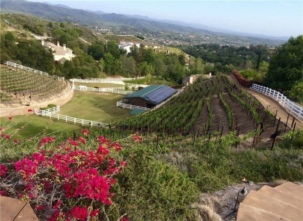 A vineyard and equestrian estate in Coto de Caza. (Photo by Greg Rys)