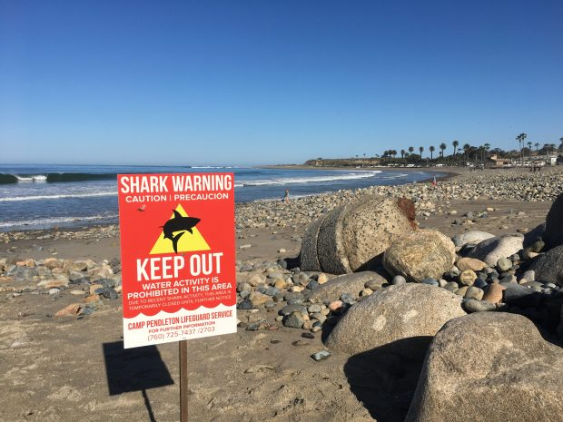 San Onofre State Beach the day after a shark attack on Saturday, April 29, 2017. Photo by Laylan Connelly