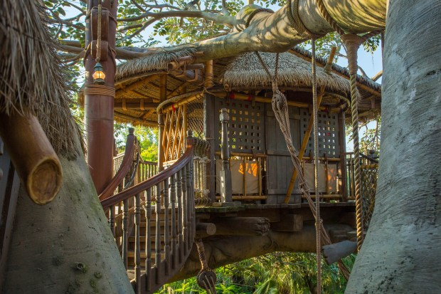 Magic Kingdom guests can relive the classic Disney film ÒSwiss Family RobinsonÓ as they climb through the shipwrecked RobinsonsÕ home at the Swiss Family Treehouse in Adventureland at the Magic Kingdom of Walt Disney World. At more than six stories high, the Swiss Family Treehouse overlooks much of Adventureland, including the rivers of the Jungle Cruise. (Courtesy: The Walt Disney World Resort)