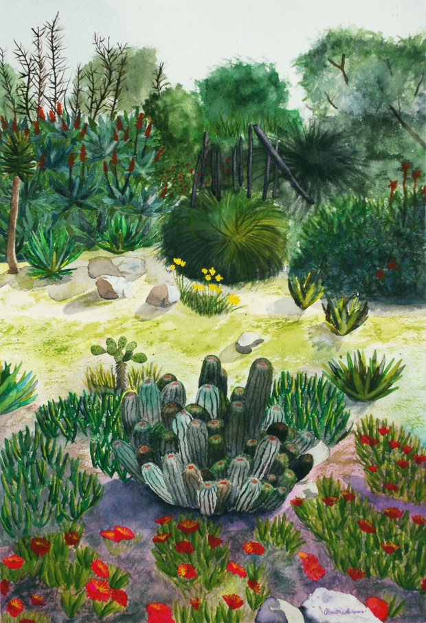 """Cactus Dream"" by Christine Lawrence: ""The Fullerton Arboretum is a place for all to gather and experience beautiful California nature. This scene shows some of the amazing variety of greenery the arboretum has to offer."""