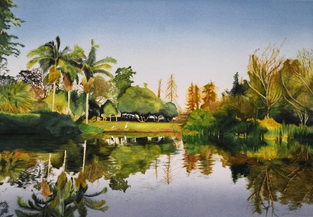"""A Reflective Glimpse"" by Irene Cabal: ""The arboretum summarizes the different regions of California into a single garden. This scene expresses a glimpse of the arboretum and a reflection off the water."""