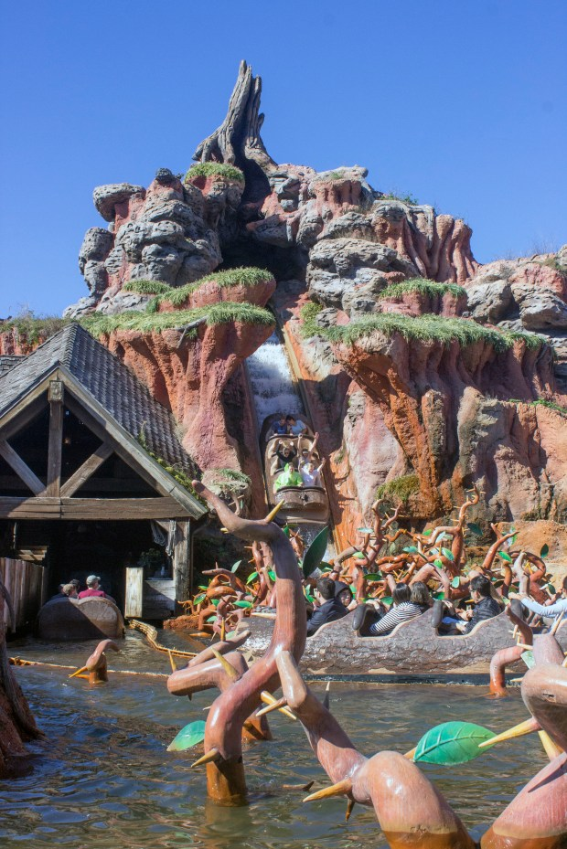 Riders scream as they plunge down the big drop into the Briar Patch that is part of the finale of the Splash Mountain attraction in Frontierland at the Magic Kingdom of Walt Disney World. (Photo by Mark Eades, Orange County Register/SCNG)