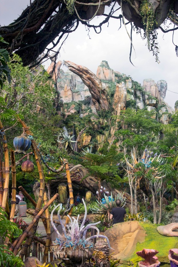 "The lush landscapes that are meant to immerse visitors into believing they are on another planet in Pandora: The World of Avatar. The 12-acre land is inside Disney's Animal Kingdom theme park at Walt Disney World in Florida, and is based on the science fiction movie ""Avatar."" (Photo by Mark Eades, Orange County Register/SCNG)"
