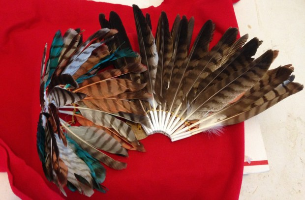 Bustle made from red tail hawk feathers.