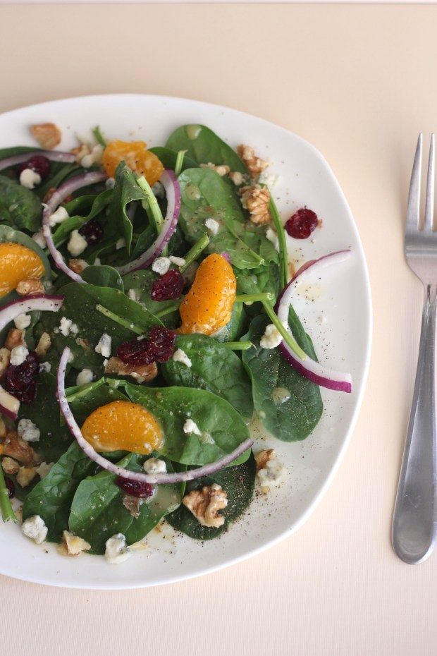 Mandarin orange and cranberry spinach salad (Photo by Stephanie Nguyen, contributing photographer)