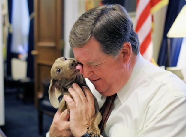 """""""Cali,"""" a dachshund, kisses Rep. Ken Calvert, R-Corona, in this 2011 photo."""