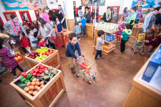 Following a ribbon cutting ceremony, kids find shopping carts and groceries to fill them with at the Trader Joe's grocery store at Pretend City Children's Museum in Irvine on Monday, January 16, 2017. (Photo by Matt Masin, Orange County Register, SCNG)