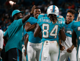 Teammates celebrate Miami Dolphins wide receiver Damore'ea Stringfellow's (84) touchdown, during the second half of an NFL preseason football game against the Atlanta Falcons, Thursday, Aug. 10, 2017, in Miami Gardens, Fla. (AP Photo/Wilfredo Lee)