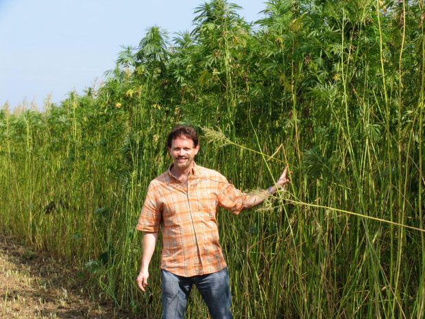 California hemp farmers still waiting for launch of multi
