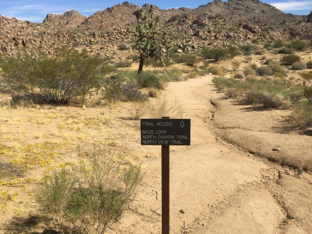 Searchers found the vehicle missing couple Joseph Orbeso and Rachel Nguyen at the Maze Loop trailhead, near the Joshua Tree National Park's main northern entrance, on July 28. (Photo by Steve Ramirez-SCNG)