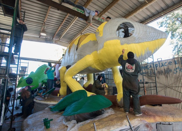 Rose Float paint-Students works on the 2017 Cal Poly Universities Rose Float entry, 'A New Leaf' at Cal Poly Pomona December 20, 2016.
