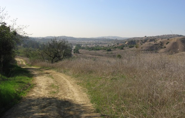 A look back at Carbon Canyon Road from North Ridge Trail in Chino Hills State Park near Yorba Linda. (Register File Photo)