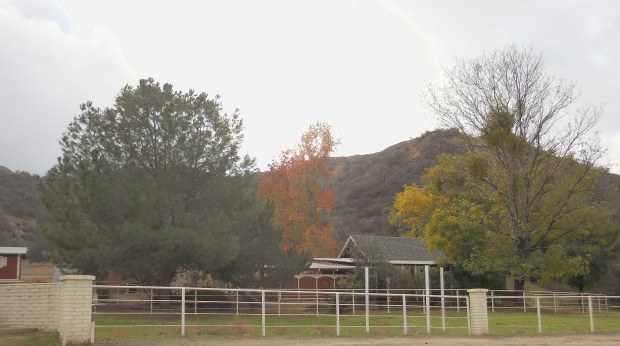 Redlands Gateway Ranch in Live Oak Canyon is the site for the Redlands Conservancy's Adventures in the Nature of Nature programs. (Courtesy Photo)