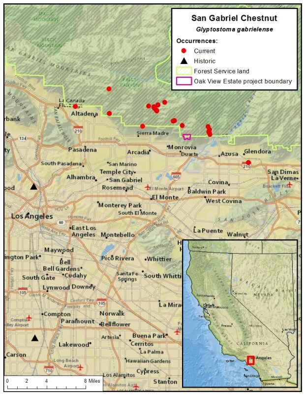 Where the San Gabriel Chestnut snail was once and can currently be found. (Courtesy the Center for Biological Diversity)
