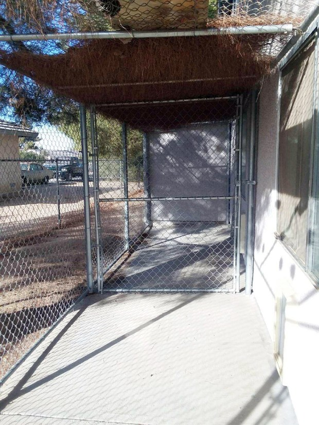 Family Assistance Program domestic violence shelter has kennels for the pets that stay there. It's the only shelter in the Inland region that allows survivors to live with their dogs in the same facility. Courtesy of Family Assistance Program