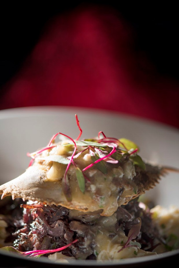 Creole Stuffed Crab with browned butter lump crab sauce is served at Roux in Laguna Beach. (Photo by Cindy Yamanaka, Orange County Register/SCNG)