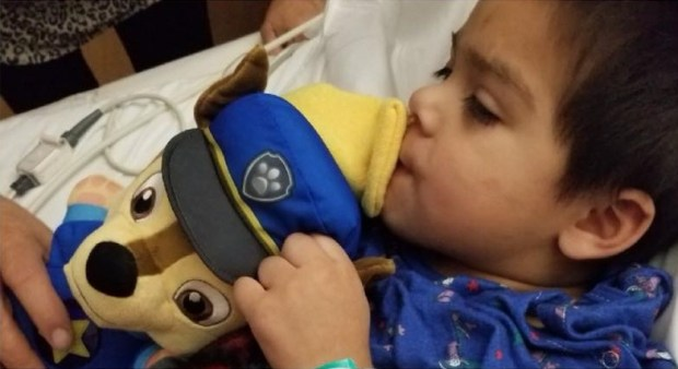 Ezra Cadena, 3, of Moreno Valley cuddles a Paw Patrol plush given to him by Riverside police Officer Darrell Hill before Ezra's heart surgery. Hill performed CPR on Ezra during a medical emergency Christmas evening at his grandparent's Riverside home. (Courtesy Eric Nunez)