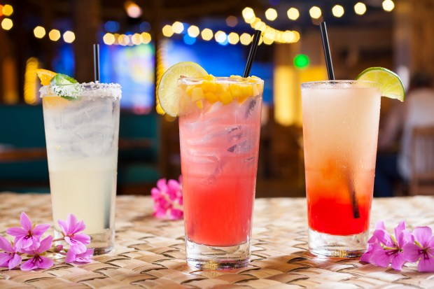 Celebrate National Margarita Day at Jimmy Buffett's Margaritaville at Universal CityWalk with one of these beauties (from left: Last Mango in Paris, Tropical Fruit Margarita and Feelin' Hot Hot Hot) on Thursday. Feb. 22. (Photo courtesy of Jimmy Buffett's Margaritaville)