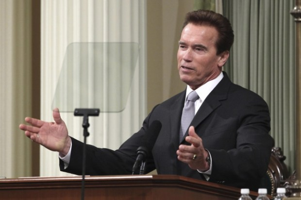 Gov. Arnold Schwarzenegger (Photo: AP file)