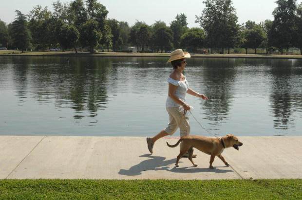 "Norvelle Minishian, of Tarzana, walks with her dog ""Cuddles"" around Lake Balboa in Lake Balboa Park, Tuesday, July 17, 2007. August marks the 15th anniversary of the filling of Lake Balboa with reclaimed water from the DC Tillman Water Reclamation Plant.(Michael Owen Baker/Staff Photographer)"