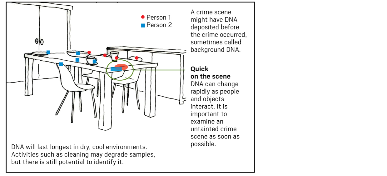 A real crime scene for DNA