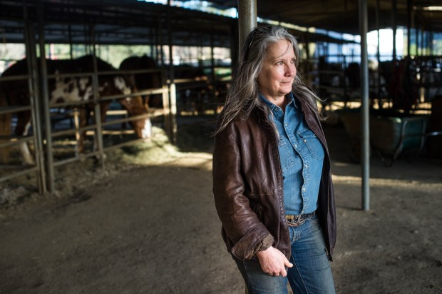 Owner Julie Schad laments having to close Griffith Park Horse Rentals on Thurs. Jan. 25, 2018. The 50-year-old business at the LA Equestrian Center is closing in June after loosing their lease. (Photo by Sarah Reingewirtz, Pasadena Star-News/SCNG)