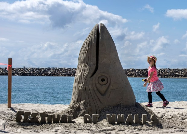 Kalli Martin checks out the sand art during Dana Point's Festival of Whales last year.(Photo by Mindy Schauer, Orange County Register/SCNG)