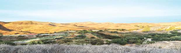 Representación de un cruce de fauna propuesto en el condado de Los Ángeles. Por Clark Stevens, Distrito de Conservación de Recursos de las Montañas de Santa Mónica.