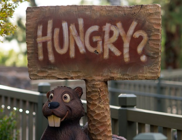 Hungry? Try a Picnic Salad, chili cheeseburger, Pulled Pork Hot Dog, sweet potato fries or funnel cake at Hungry Bear in Critter Country. American fare and a allergy-friendly menu ranges from $9.29 to $10.69. ///ADDITIONAL INFORMATION: DisneyFood.HungryBear.cy Ð 10/06/15 Ð CINDY YAMANAKA, ORANGE COUNTY REGISTER - HUNGRY BEAR RESTAURANT Location: Critter Country, Disneyland Quick hit: Counter service. Meals: Lunch, dinner. Cuisine: American. Allergy-friendly menu. Food items: $9.29 to $10.69 (does not include price of funnel cake which is $6.49) What to order: Picnic Salad, chili cheeseburger, Pulled Pork Hot Dog, sweet potato fries, funnel cake What to skip: Turkey wrap, Crispy Chicken Sandwich Review: This is a large restaurant with an enormous amount of seating overlooking the Rivers of America. If youÕre not in a rush, this is a great pitstop for resting and fueling up. ItÕs also offers meals for allergy sensitive or gluten intolerant visitors. Ask for this specialized menu at the cash register. Two burger options here: A Classic one-third pound Angus burger with cheese, or a chili cheeseburger. The chili burger comes with three mini onion rings, creating good crunch. If youÕre worried about a Sloppy Joe-style mess, the burger contains a thin layer of chili so itÕs easy to eat. The Picnic Salad is tightly packed in a to-go container, layered with fresh greens, almonds, sliced strawberries, chunks of turkey, feta cheese, cranberries, and sliced jicama. The strawberry vinaigrette nicely completes this surprisingly light and tasty salad. Avoid the turkey wrap: A soggy flour tortilla stuffed with sliced turkey meat that tastes processed. For dessert, indulge in the funnel cake Ð a plate of deep-fried spiraled cake topped with powdered sugar and your choice of strawberry sauce or chocolate brownie crumbles. CanÕt choose? You can get both toppings, split on each half. Also, ask for whipped cream. ItÕs not listed as a topping, but they do have it. Inside info: This menu
