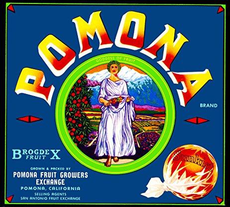 better pomona label fruit
