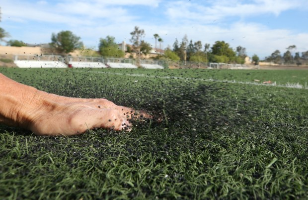Rubber pellets are so thick in some areas of the soccer field at Norco College that brushing your hand across the artificial turf sends them into the air. Norco College is one of many fields to have Duraspine artificial turf fields installed. The manufacturer failed to put in an anti-ultraviolet light treatment, so many of these fields are discolored and, as they break down, the grass-like fibers turn into cat hair-like fiber and the rubber mat underneath starts to show through, as does the rubber pellet put down atop the mat. Photo taken on Friday, June 15, 2018. (Stan Lim, Inland Valley Daily Bulletin/SCNG)