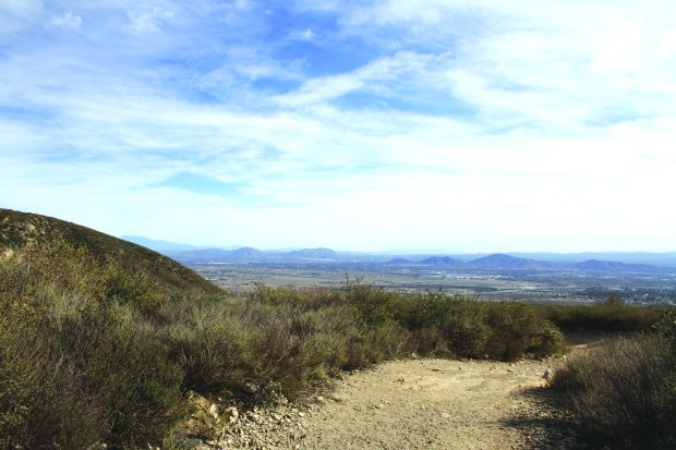 North Etiwanda Preserve in Rancho Cucamonga is seen here in December 2013. (Jennifer Iyer SCNG)